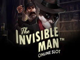 The Invinsible Man